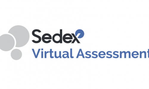SEDEX_Smeta-online-assesment